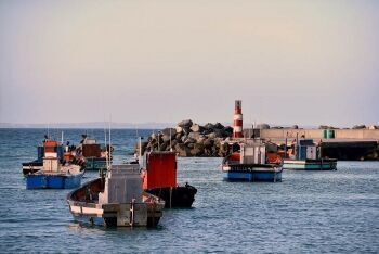 Struisbaai, harbour, fishing boats, Overberg, Whale Coast